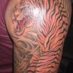 tatuagem masculina tigre